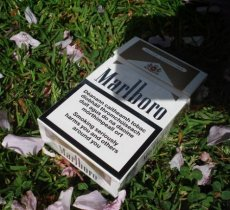 Should the government do more to discourage cigarette smoking?